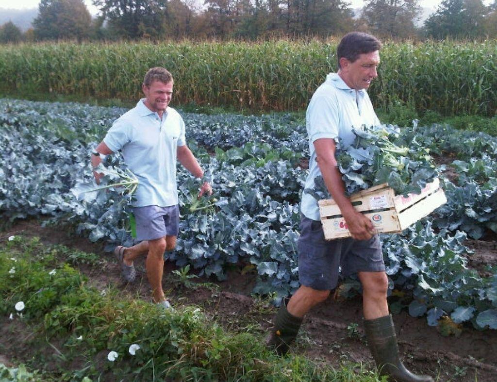 Borut Pahor je kmet