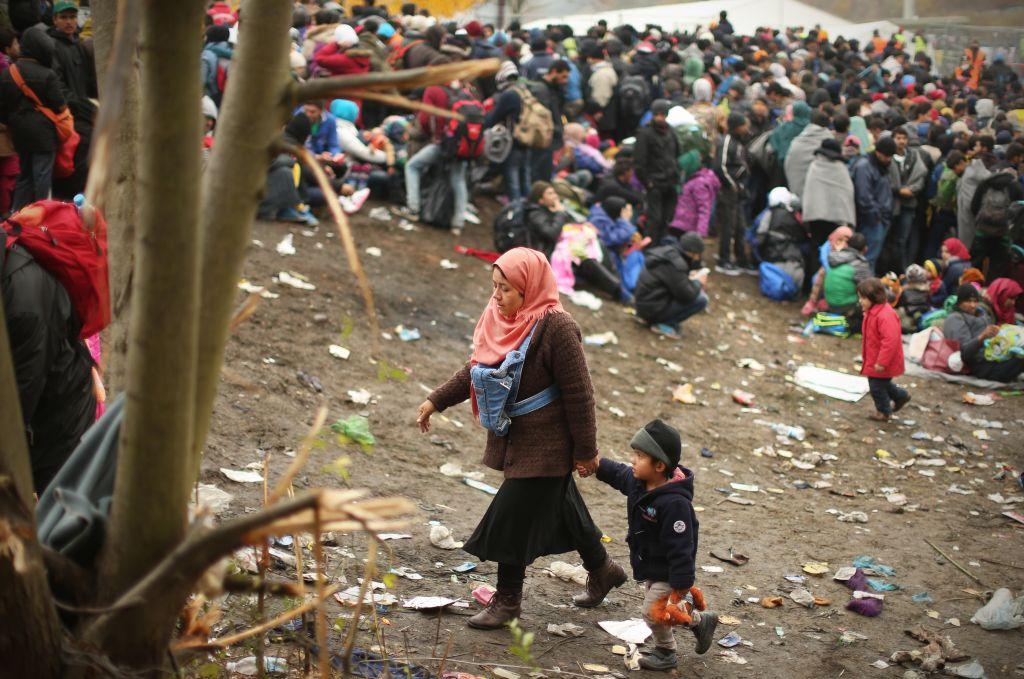 »Živali ne pasite na pašnikih, kjer so se zadrževali migranti«