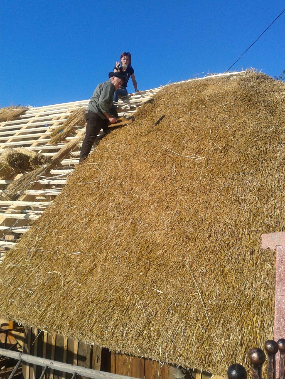 Za streho slama iz pšenice in pire